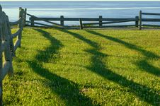 Free Fence Shadows At Sunrise Stock Image - 3104731
