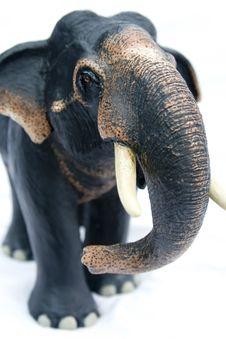 Free Elephant Royalty Free Stock Images - 3105119