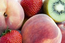 Free Fruit Collection Royalty Free Stock Image - 3105196