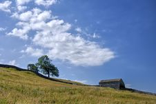Barn & Tree On Slope Royalty Free Stock Photography