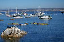 Free Kayakers Stock Photo - 3106230