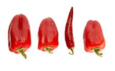 Free Line Of Peppers Royalty Free Stock Photography - 3108307