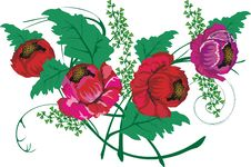 Free Red Poppy Decoration Royalty Free Stock Photos - 3108718