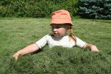 Free Girl In The Grass Royalty Free Stock Images - 3108959