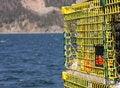 Free Yellow Metal Traps Stock Photo - 31004090
