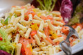 Free Pasta Salad Stock Photo - 31008650