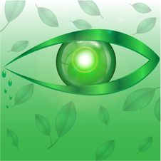 Free Eye Of Green Color Stock Images - 31001244
