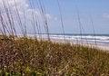 Free Florida Beach Shoreline Royalty Free Stock Photos - 31016848