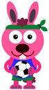 Free Soccer Bunny Stock Photo - 31018090