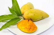 Free Mango Stock Photo - 31010970