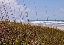 Free Florida Beach Shoreline Royalty Free Stock Photos - 31016848