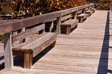 Free Benches On The Beach Stock Photo - 31016860