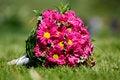 Free Wedding Bouquet Royalty Free Stock Photos - 31023668