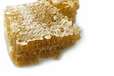 Free Honey Comb Royalty Free Stock Photo - 31024285