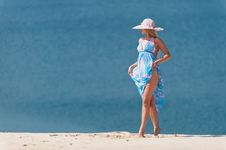 Free On The Beach Stock Image - 31025391