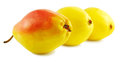 Free Three Sweet Pears Stock Photography - 31036072