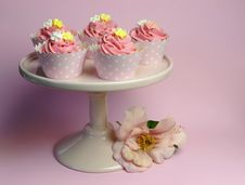 Beautiful Pink Decorated Cupcakes On Pink Cake Stand - With Pink Flower Stock Photography