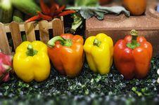 Free Paprika Stock Image - 31055541