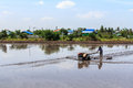 Free Process Of Thai Farmer Working With A Handheld Motor Plow In A Rice Field. Stock Photo - 31060200