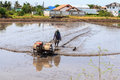 Free Process Of Thai Farmer Working With A Handheld Motor Plow In A Rice Field. Royalty Free Stock Images - 31060239