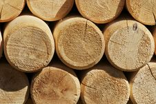 Free Timber & Logs Royalty Free Stock Images - 31060369
