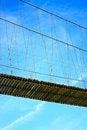 Free Rope Bridge Royalty Free Stock Photo - 31078115