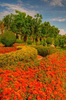 Free Garden Royalty Free Stock Photo - 31078385
