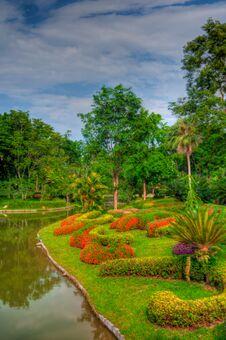 Free Garden Royalty Free Stock Photos - 31079188