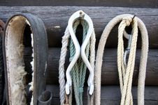 Free Details Of Diversity Used Horse Reins Stock Photos - 31084203