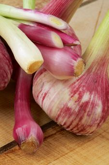 Free Garlic And Onion Royalty Free Stock Image - 31094776