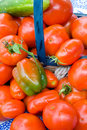 Free Tomatoes And Veggies Stock Photography - 3112932