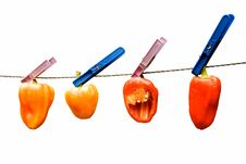 Free Peppers On Wire Stock Images - 3112114