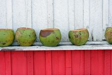 Free Coconuts In The Hut Stock Images - 3116654