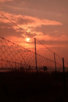 Free Sunrise Barbed Wire. Royalty Free Stock Photo - 31103555