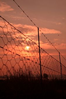 Free Sunrise Barbed Wire. Royalty Free Stock Photo - 31103665