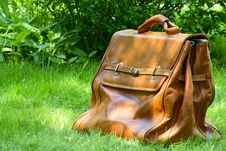 Free Carpetbag Royalty Free Stock Photography - 31107217