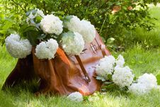Free Carpetbag Full Of White Flowers Stock Photo - 31108740