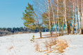 Free On The Bank Of The Frozen Lake. Royalty Free Stock Photos - 31110988