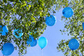 Free Balloons Flying Away Into The Sky Stock Images - 31119744