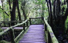 Free Wood Bridge Royalty Free Stock Image - 31115116