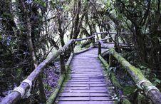 Free Wood Bridge Stock Photo - 31115120