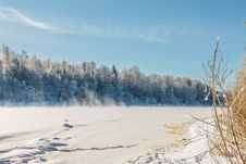 Free Dvina Rver Under Ice. Landscape Near House Of Painter Repin. Stock Images - 31118354