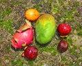 Free Natural Fruits Royalty Free Stock Photos - 31121788