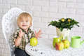 Free Happy Boy And Apples Stock Images - 31123784