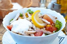 Free Fresh Chicken Salad Royalty Free Stock Photo - 31123785