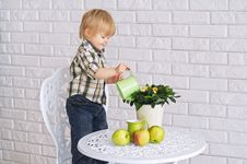 Free Kid Watering A Pot Flower Royalty Free Stock Photography - 31123987