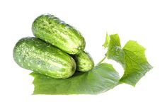 Free Cucumbers On White Background With Green Leaf Royalty Free Stock Photos - 31149908