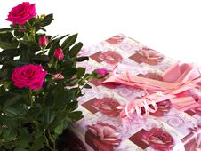 Box With A Gift And Bouquet Of Roses Royalty Free Stock Photo
