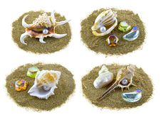 Shells On Sand Isolated Royalty Free Stock Photo