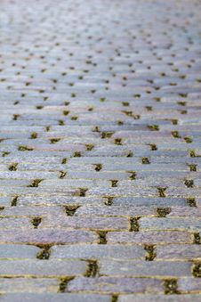 Free Cobble-stone Pavement Royalty Free Stock Photo - 31166055